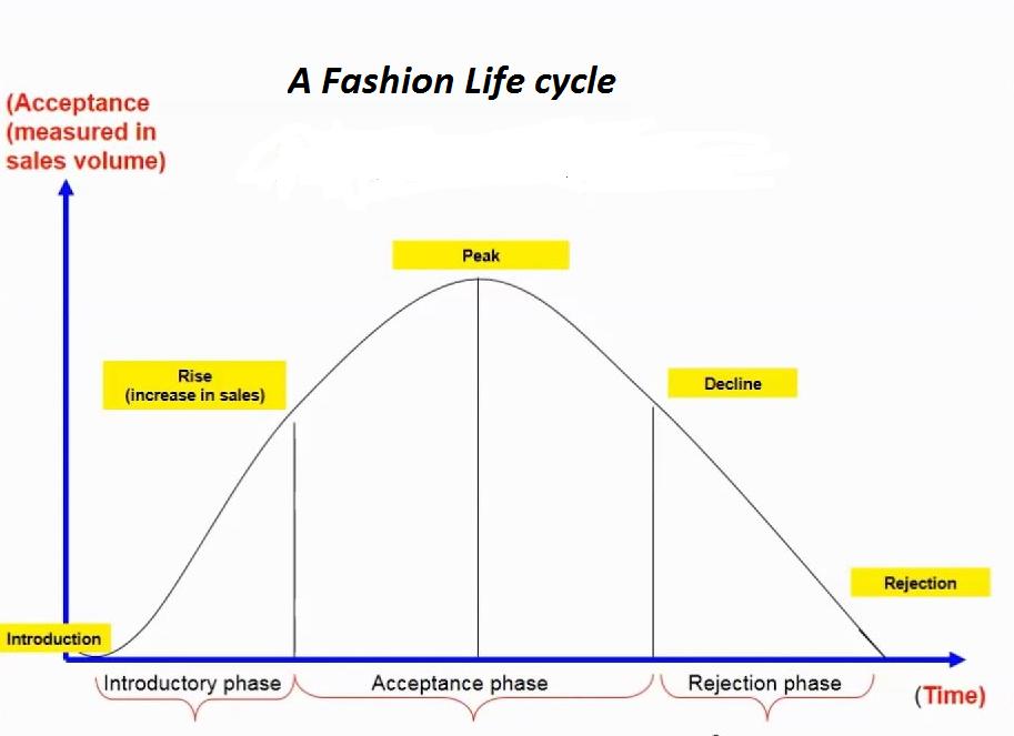 Fashion Life cycle